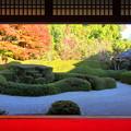 大池寺(滋賀県)