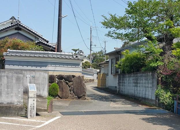 0502竜田川6