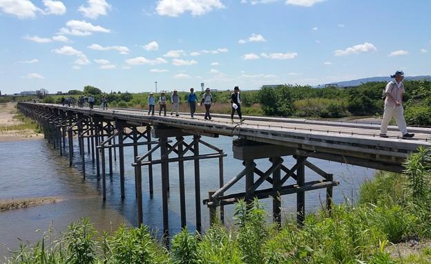 0528流れ橋1