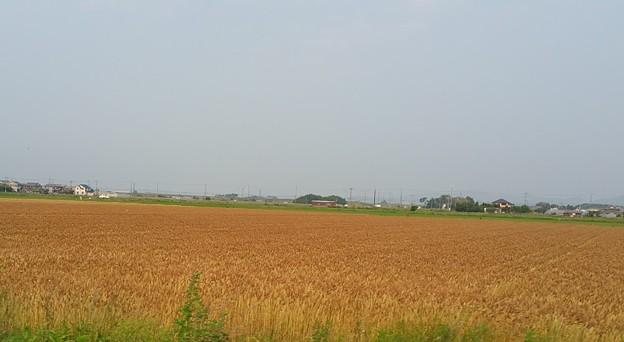 0610琵琶湖4