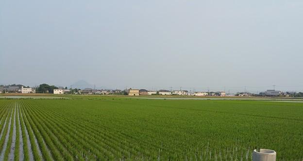 0610琵琶湖5