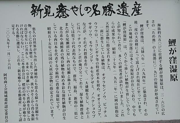 0914-4恋が窪湿原2
