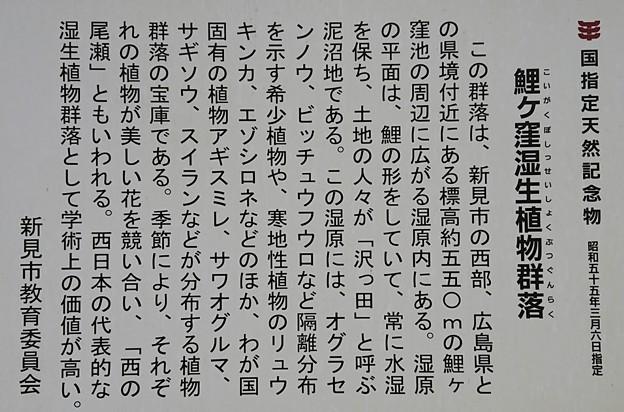 0914-4恋が窪湿原3