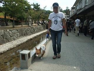 2009_0921ワン友と会う0026