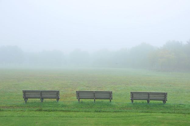 朝の指定席