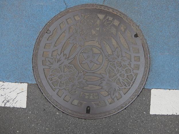 埼玉県・東松山市