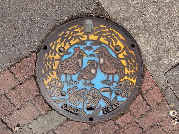 茨城県・守谷市(マンホールカード図案)