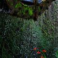 丸山千枚田_苔むす水車と赤い花