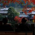 写真: 永源寺:秋色・・・【蔵出し】