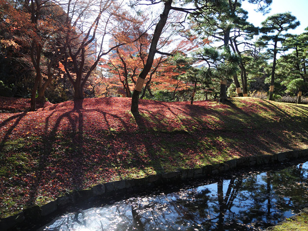小石川後楽園31