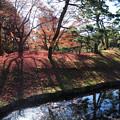 写真: 小石川後楽園31