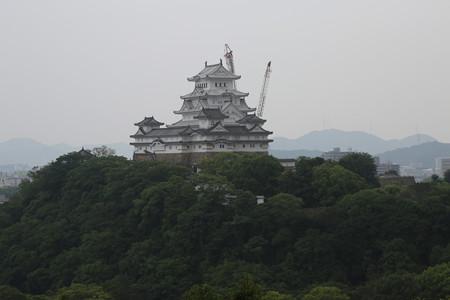 男山配水池公園から姫路城 - 01