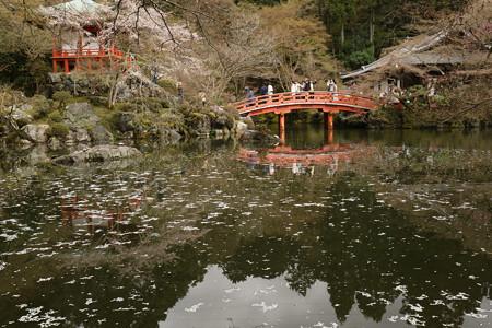醍醐寺 (13)
