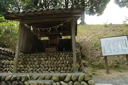左馬武神社(新野左馬助親矩の墓) (3)