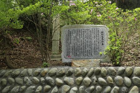 左馬武神社(新野左馬助親矩の墓) (4)