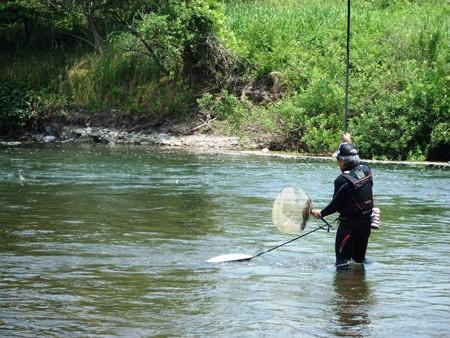鮎釣り  2017