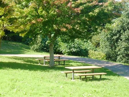 1-秋の丘陵公園
