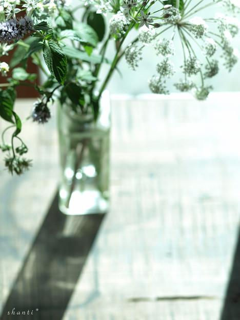 写真: 野の花をいける