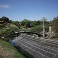 写真: 新緑後楽園