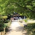 Photos: 後楽園緑