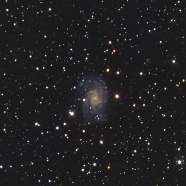 渦巻銀河NGC2835