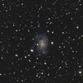 Photos: 渦巻銀河NGC2835