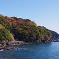 IMGP8673紅葉~海に~