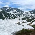 写真: [2017年7月15日]奥大日岳より