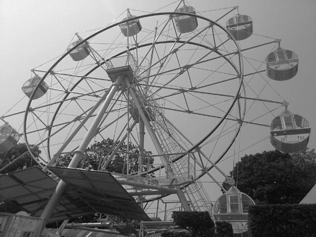 【アプリカメラ】LittlePhoto