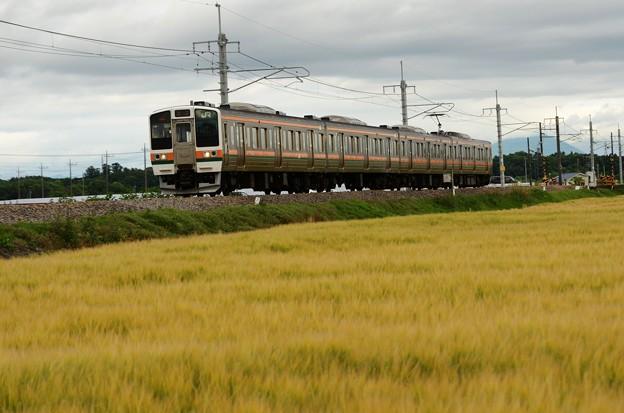 211系A58編成両毛線462M高崎行き
