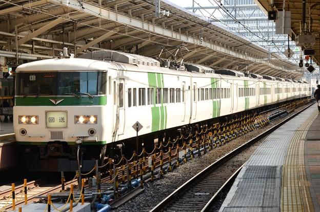 Photos: 185系特急踊り子154号東京9番到着