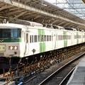 185系特急踊り子154号東京9番到着