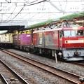 Photos: 金太郎62号機牽引臨時貨物8062レ小山通過!