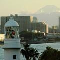 写真: 灯台と富士山