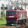 Photos: 金太郎27号機独り旅