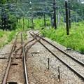 東北本線・仙石線接続線分岐点