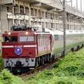 EF81 80牽引カシオペア紀行号宇都宮貨物(タ)通過