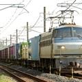 Photos: EF66 114号機代走高速貨物4093レ