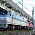 EF66 127号機牽引4093レ次位HD300-901(ムド)