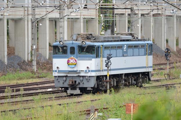 Photos: EF65 2095号機JR貨物30周年HM付
