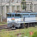 EF65 2095号機JR貨物30周年HM付