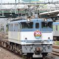 写真: JR貨物30周年HM付きEF65 2095牽引臨配8592レ大宮5番入線