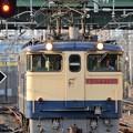 写真: 国鉄色EF65 2139単機