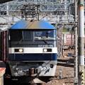 Photos: 岡山の桃太郎15号機牽引5071レ京都7番通過