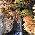 写真: 黄葉と滝