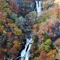 写真: 秋色の霧降の滝