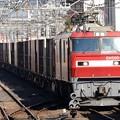 Photos: 金太郎34号機牽引高速貨物94レ