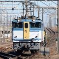 写真: EF65 2127(カラシ)牽引臨配8592レ