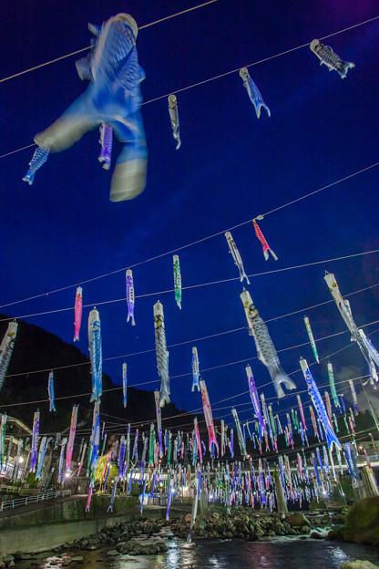 杖立温泉郷 鯉のぼり祭り