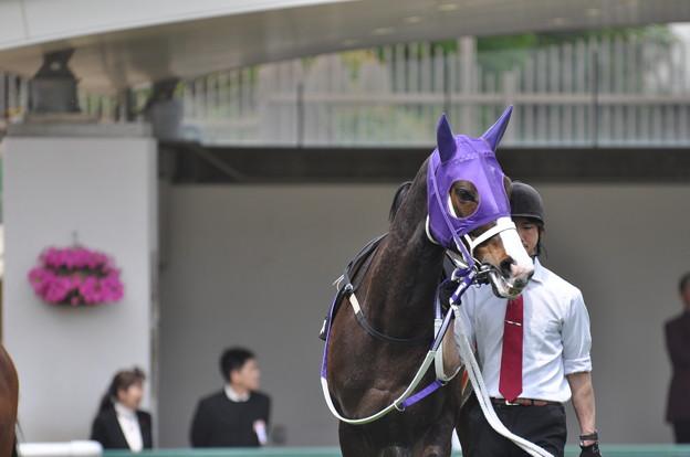 Koei Otome 01